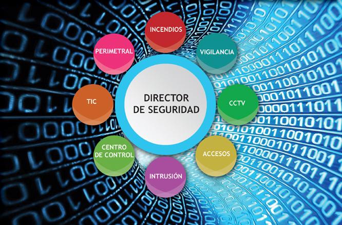 Curso de Especialista en Ciberseguridad (CISO)